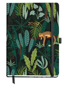 Agenda 2020 cosida selva 90...